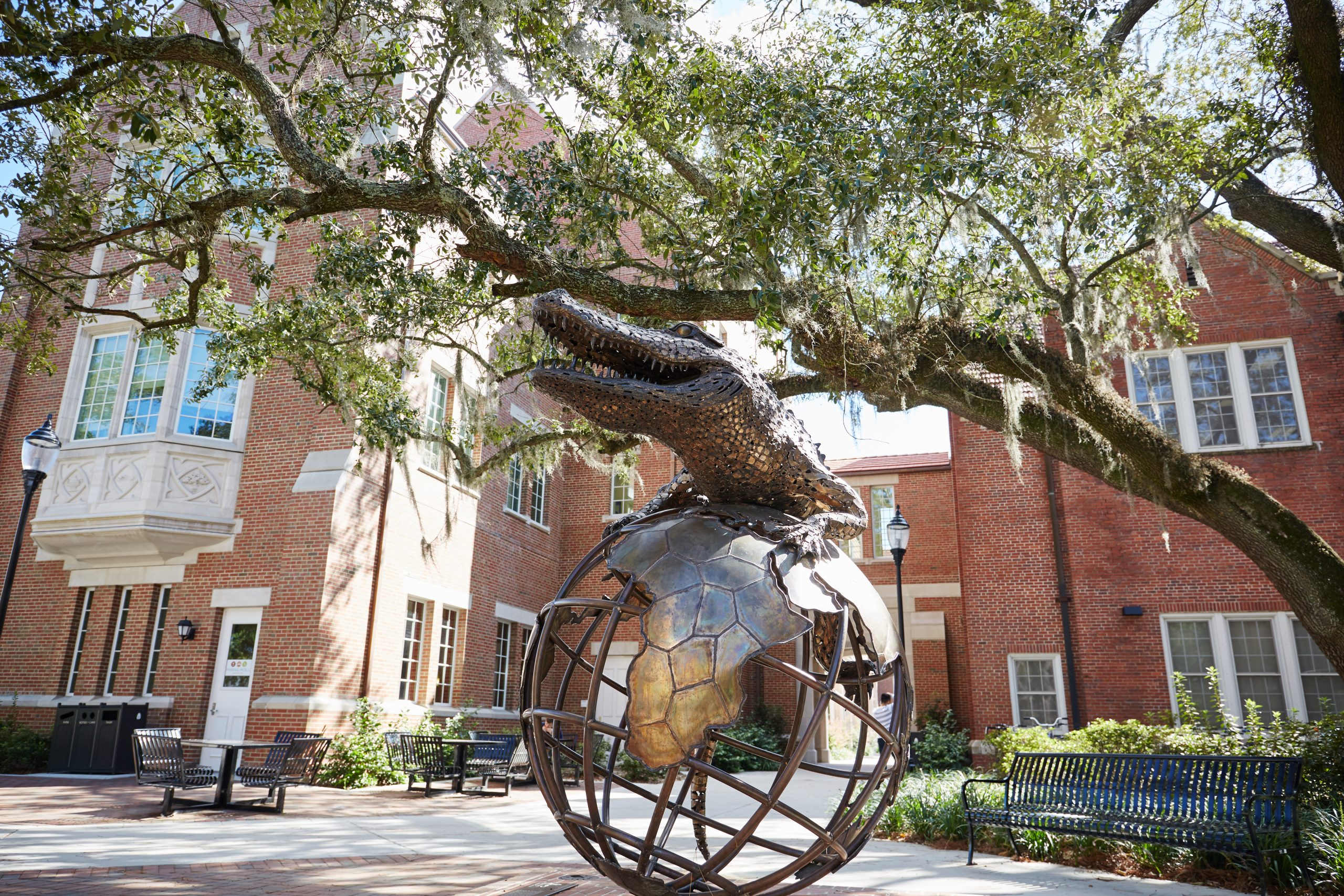 Student Q&A: Why did you choose UF?