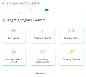 A screenshot of a program